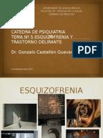 Psiquiatria Tema 5