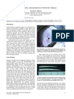 Oldfield_Stingrays_2005.pdf