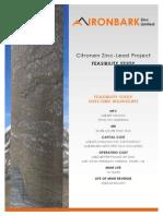 Citronen-Feasibility-Study.pdf
