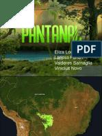 pantanal completo.pdf