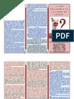 CEA-Fco Villa Obra Misionera Mini-Libro Puerco Color