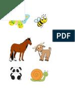 haiwan herbivor