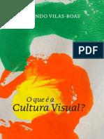 O que é Cultura Visual