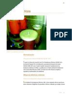 infor98a.pdf