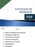Flotacion de Minerales