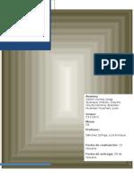 Informe Nº 10 de procesamiento de minerales.docx
