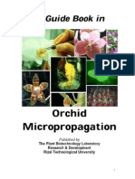A Guidebook in Orchid Micropropagation