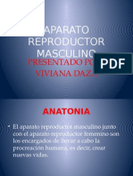 EXPOSICION APARATO REPRODUCTOR MASCULINO.pptx
