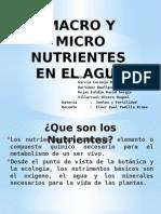 Macro y Micro nutrientes del Agua