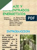 Ensilaje y Concentrados Energeticos