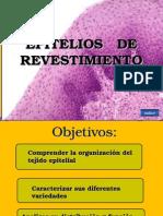 01_Epit_revestimiento