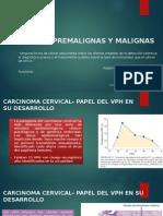 Neoplasias Premalignas y Malignas