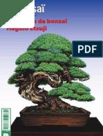 France Bonsaï 107
