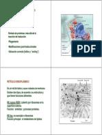 Clase Membranas Intracelulares 2012