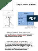analisis de powell.pptx