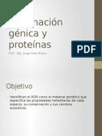 145916065-Informacion-genica-y-proteinas.pptx