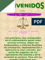 Principios Complementarios Abril 2008