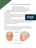 Praktikum Anatomi I Modul 2.1.pdf