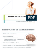Metabolismo de Carbohidrato Parte I