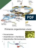 Origen de Los Organismos Vivos 2015