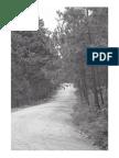 Manual Practico de Procedimiento Administrativo