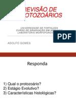 Revisao Parasito- PDF