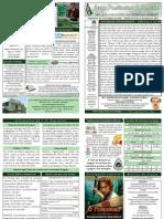 BOLETIM DOMINICAL DE 31-01-10