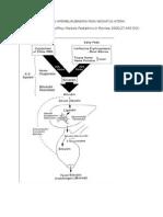 Pendekatan Diagnosis Hiperbilirubinemia Pada Neonatus Ikterik