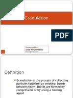 Granulation Process