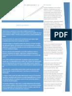 a03 - Paper - Perfil Business Intelligence - A Cadeia de Processamento