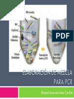Presentaciones de PCR y Geles-Vr