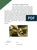 Endapan Mineral Golongan Sulfida