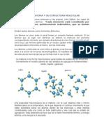 Estados de La Materia y Su Estructura Molecular