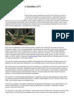 FCS Networker   Idee Giardino (17)