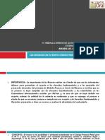 Sistema Acusatorio Adversarial - Los Recurso II