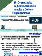 IA 19 ORGANIZACAO PROATIVA Administrando a Informacao Cultura Organizacional
