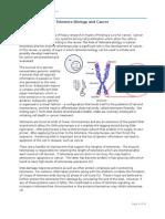 Telomere Biology & Cancer