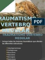 Traumatismo Vertebro Medular
