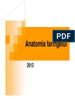 Anatomia Faringelui 2013
