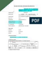 5_modelo Resumen Ejecutivo