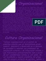 cultura org.pptx