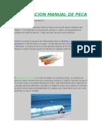 Compilacion Manual de Peca