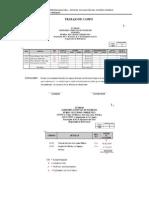 PBV-Proceso de La Aud_Especial-Trab_Campo