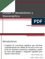 Unidad IV Metabolismo y Bioenergética