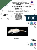 Artêmia Salina Novo