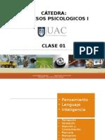 Catedra Procesos Psicologicos 01