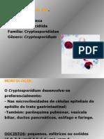 cripstoridium