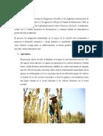 Turismo y economia Peru Bolivia.docx