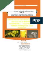 DIURETICOS PROYECTO.docx