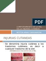 injurias cutaneas